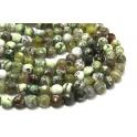 Fiada de Pedras Bolinhas Semi-Preciosas Verde Mesclado (8 mm) - [48 unds]