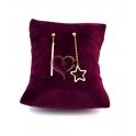 Brincos em Aço Pau e Estrela - Dourado Rosa