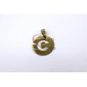 Pendente Aço Inox Medalha Redonda Letra C - Dourado (25mm)