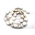 Fiada de Pérolas Natural Achatadas (12x4mm)