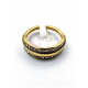Anel Aço Inox Fileira Dupla Brilhantes - Dourado