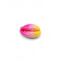 Pendente Buzio / Concha - Fuchsia Rosa Amarelo (24x15mm)