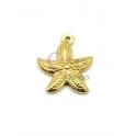 Pendente Aço Inox Estrela do Mar - Dourado (20mm)